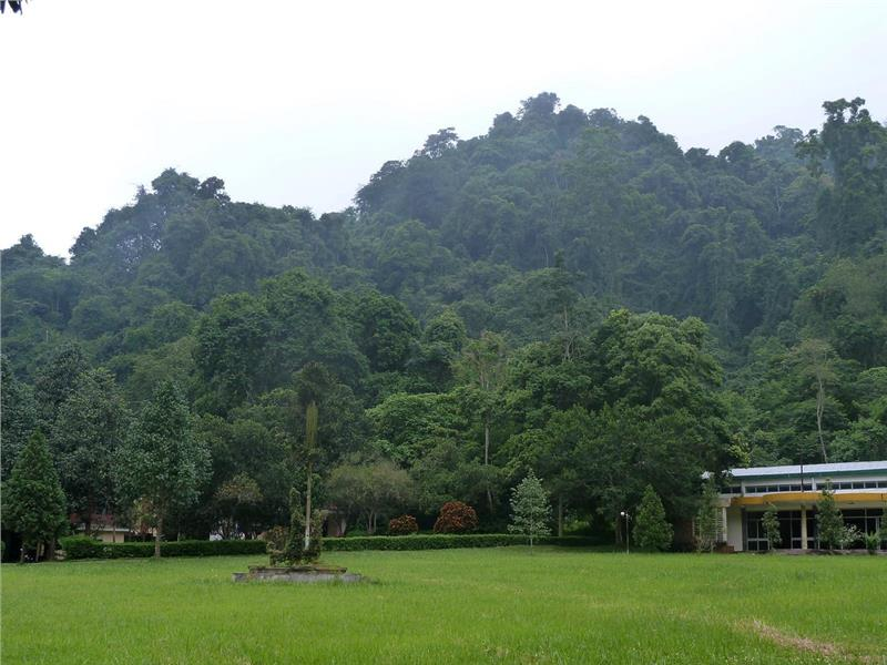 Cuc Phuong - a tranquil scenery