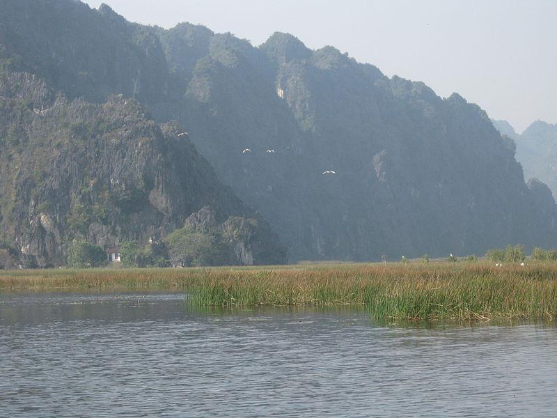 Van Long Nature Reserve - The Bay of no wave