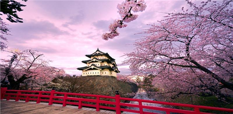 Tokyo – Núi Phú Sĩ - Yamanashi- Nagoya- Kyoto-Universal - Osaka