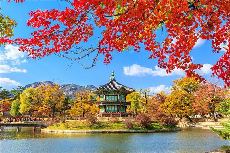 Tour Hàn Quốc (Seoul – Jeju – EverLand – Nami)