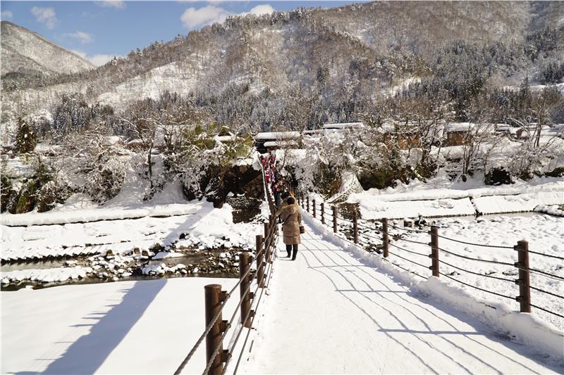 Du lịch Nhật Bản nên đi vào mùa nao?