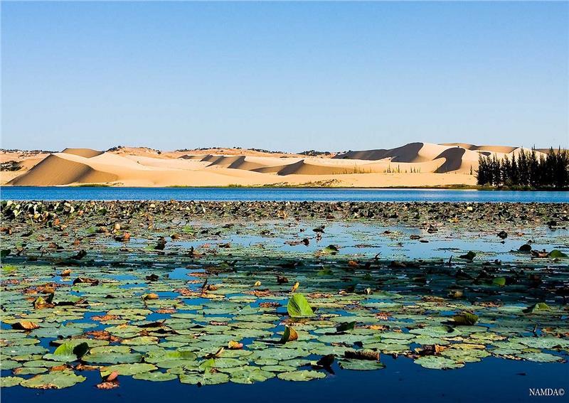 Lotus Lake Mui Ne
