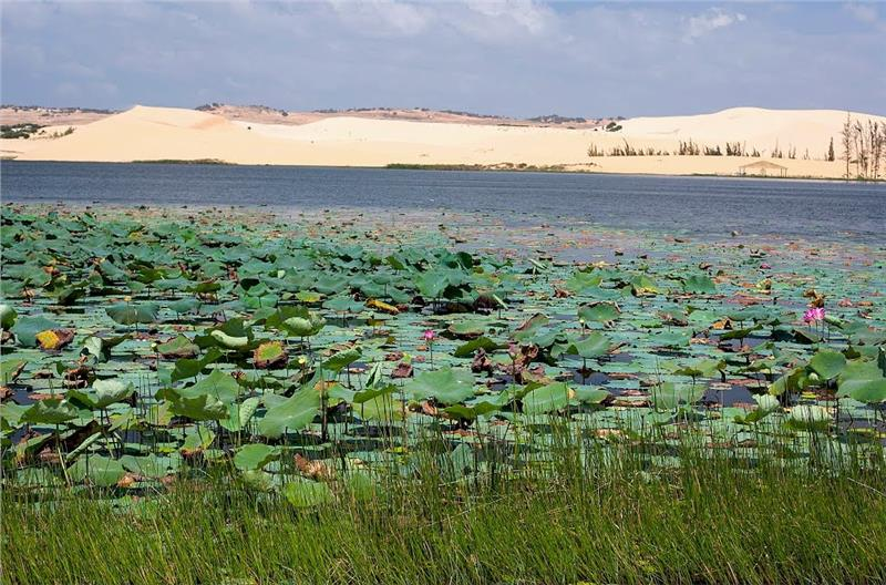 Lotus Lake and White Sand Dunes