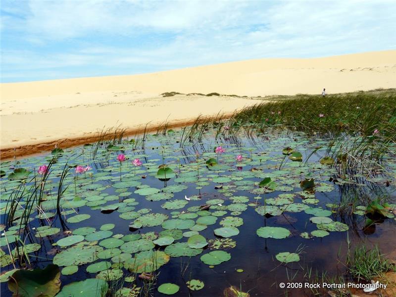 Lotus Lake in Mui Ne - Phan Thiet