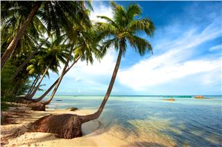 Phu Quoc Pearl Island receives a big boost in tourists