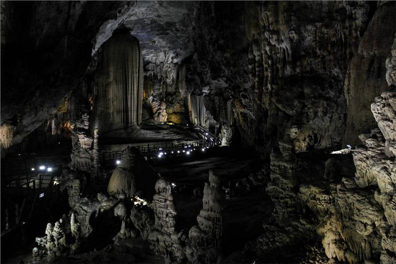 Stalagmites in Paradise Cave