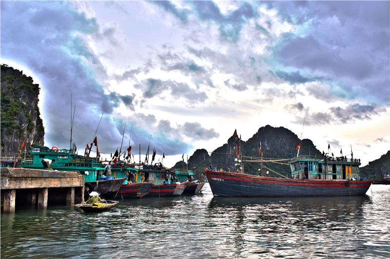 Fishing boats in Co To Island