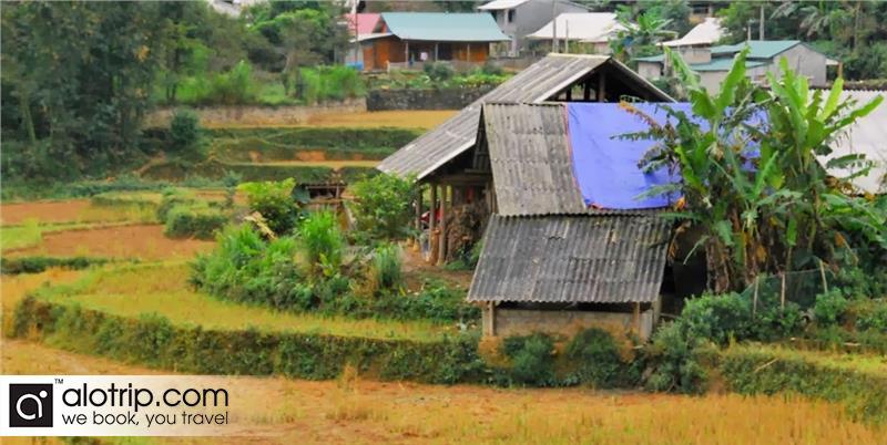 Ban Pho Village