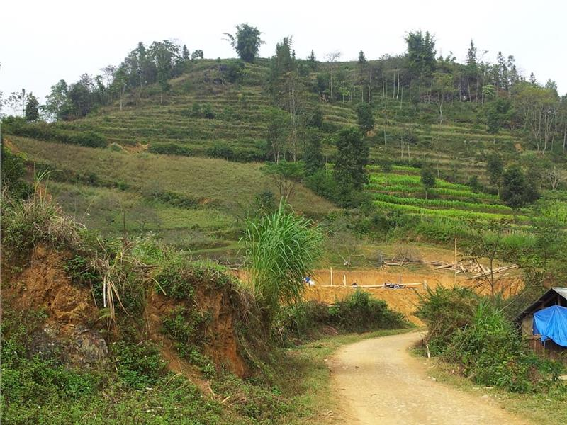 Road to Ban Pho Village