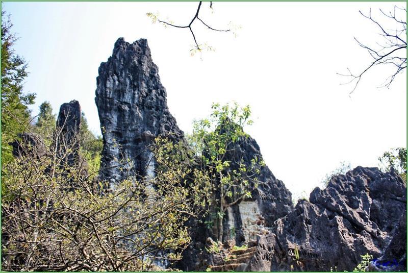 A corner of Ham Rong Mountain