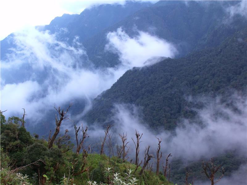 Hoang Lien National Park in Sapa
