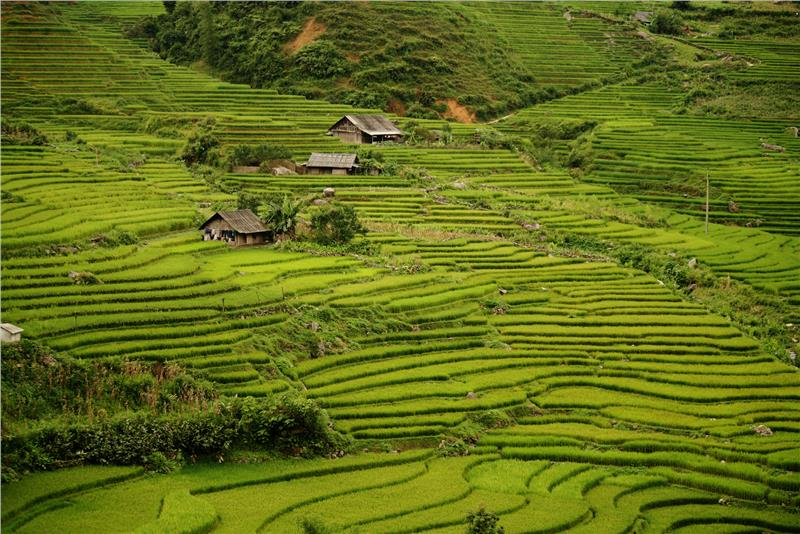 Sapa always a great destinaion