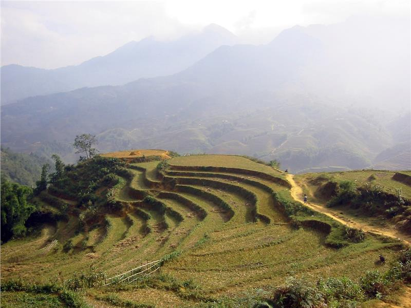 Sapa weather in spring
