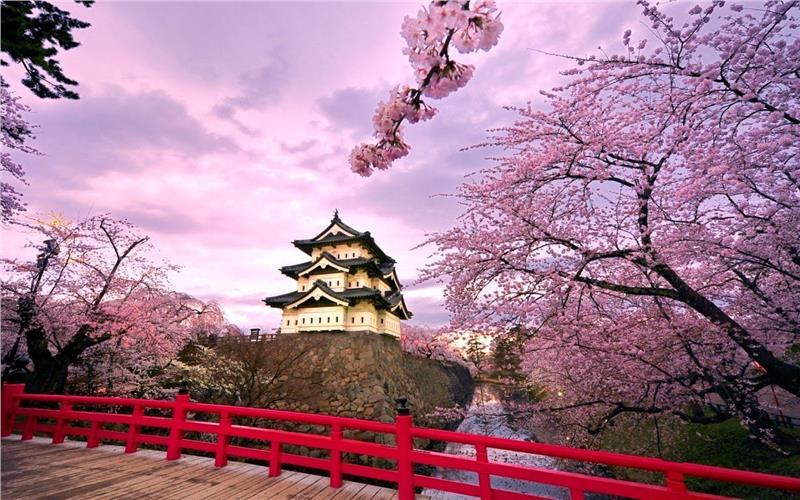 Mua Sim 4G vi vu các địa điểm du lịch ở Nhật Bản