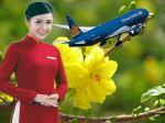 VN Airlines with positive operations on Lunar New Year