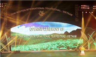 Thai Nguyen International Tea Festival