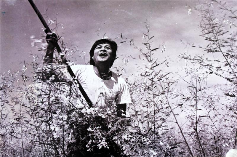 The Wild Field among the first film of Vietnam