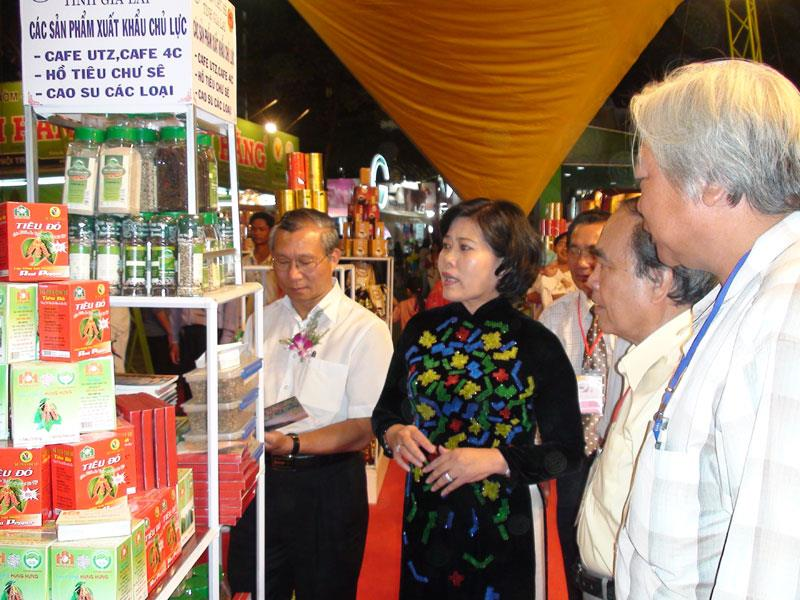 An expo in Gia Lai