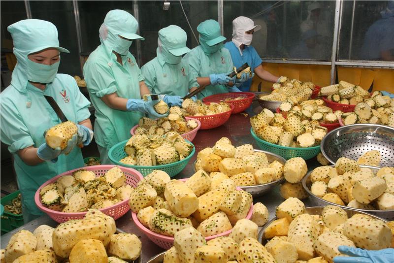 Chinese still main market of Vietnam fruits