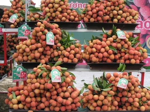 Vietnam fruit appeals world market
