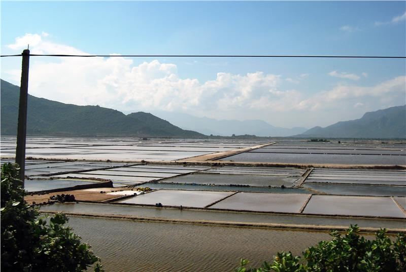 Phan Rang Salt Field in Ninh Thuan