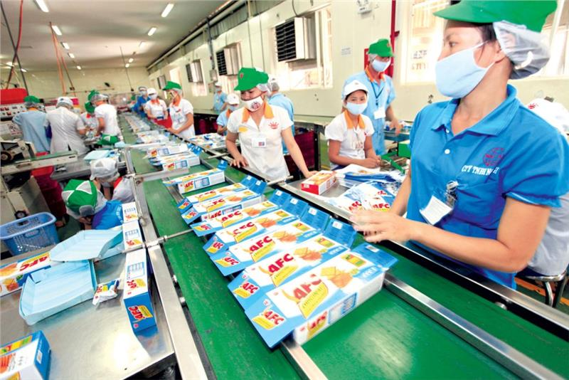 Production line in AFC factory