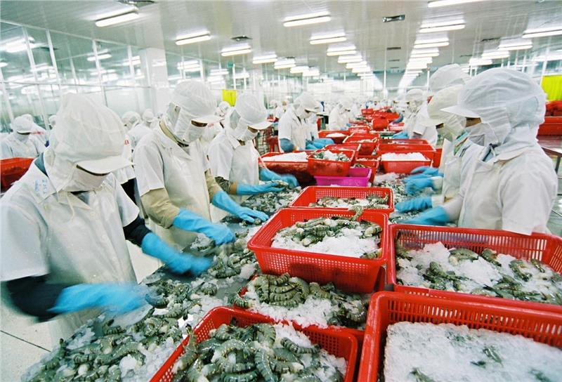 Seafood product export