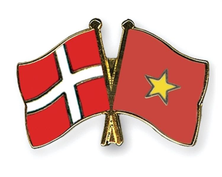 Flag Pins Denmark Vietnam
