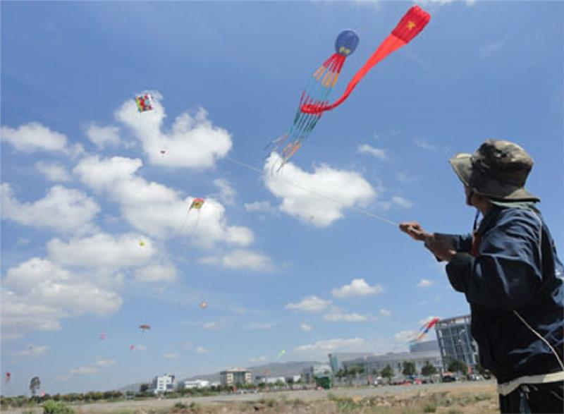 International Kite Festival 2014 flying with Vietnam
